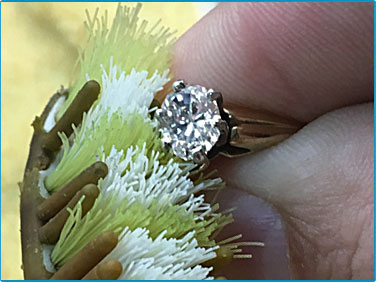 cleaning your diamond ring